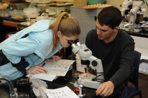 Students in lab looking in a microscope