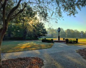 Morning on Francis Marion's main campus