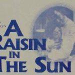 Cover of A Raisin in the Sun