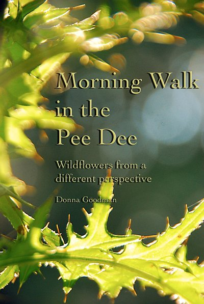 """Morning Walk in the Pee Dee"" work with nature like background"