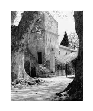 Black and white photo of french villa stairs