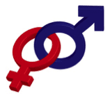 Gender-Sexuality Alliance Interest Meeting