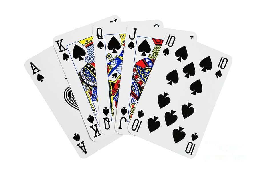 Intramural Spade Tournament