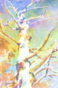 A watercolor piece depicting a dying, yet colorful tree.