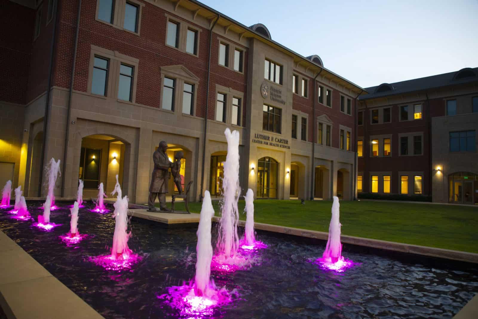 FMU 'Lights S.C. Purple' to commemorate 19th amendment