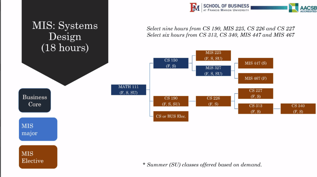 Course overview for MIS: System Design