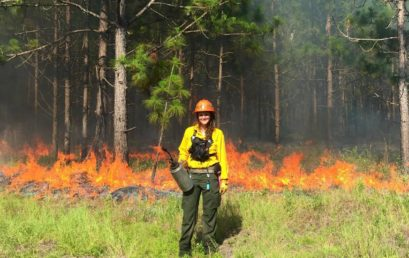 FMU's Hebler takes to the field with DNR